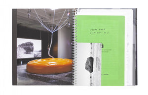 Cosmo-Eggs (Official catalogue of the Japanese Pavilion at the 58th Venice Biennale International Art Exhibition)