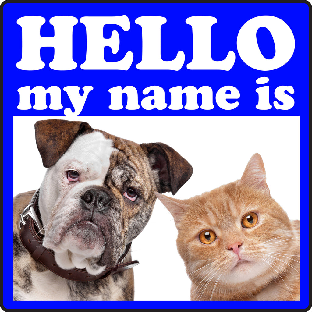 The most popular name of pups