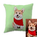 customized 3D pet portrait hand drawn pillow double sided printed for pet owner
