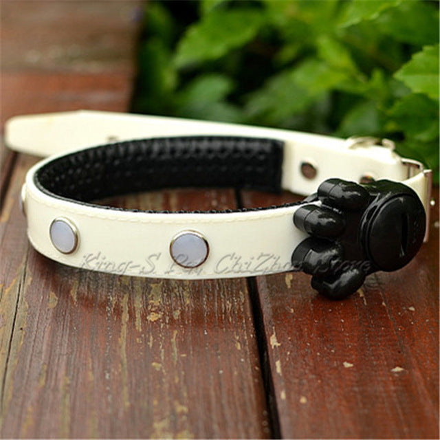 Dog LED Luminous Collar