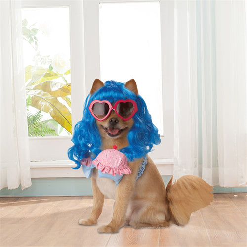 Dog Costume Blue Long Curly Hair