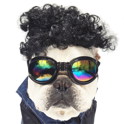 Funny Dog Halloween Costume (Wig+Glasses)