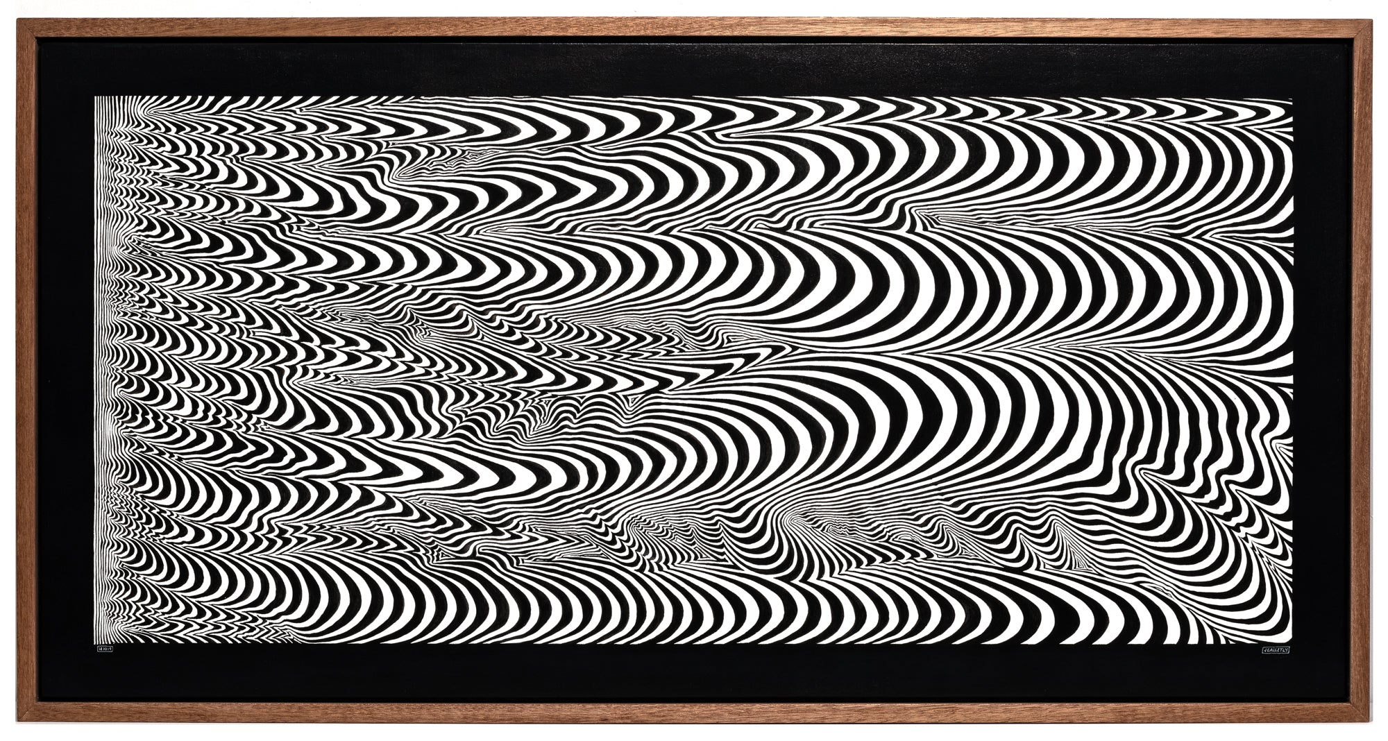 Josh Galletly Art, contemporary black and white line paintings, optical illuson psychedelic energy fields