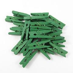 Mini Green Pegs - Must Love Party