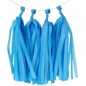Sky Blue Tassels (12pcs) - Must Love Party