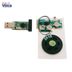 musical light activated sound chip