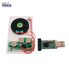 recordable push button chip insert