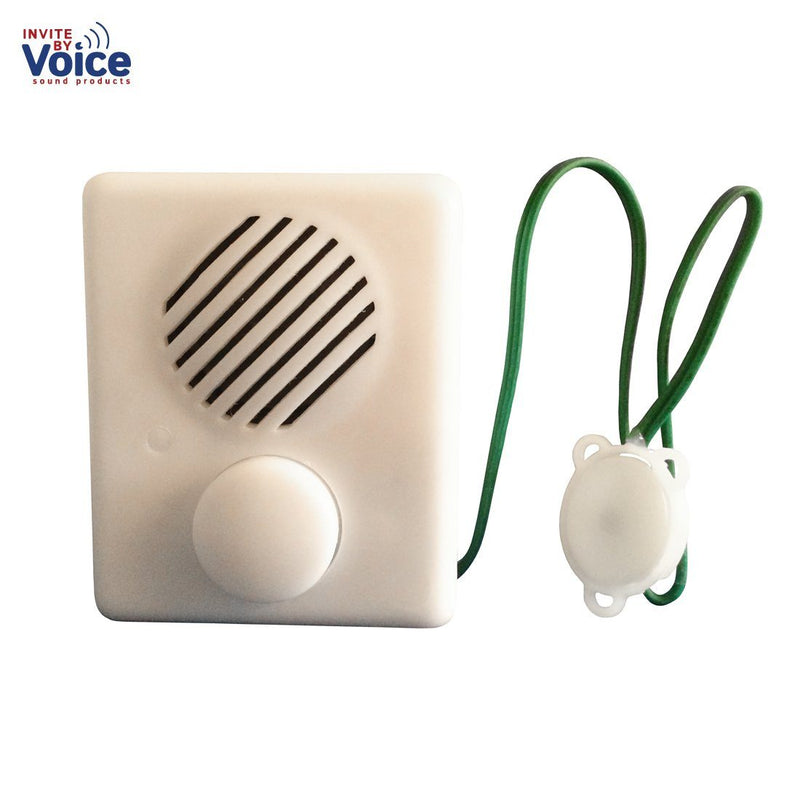 recordable voice box for stuffed animals