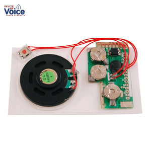 Set of 10 of USB Sound / Voice Recording Module - Push Button