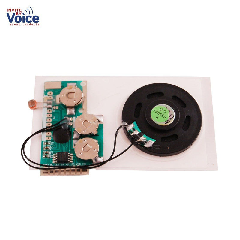 USB Light Sensor Voice Chip Module