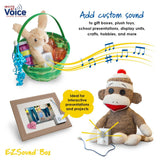 EZSound musical voice box