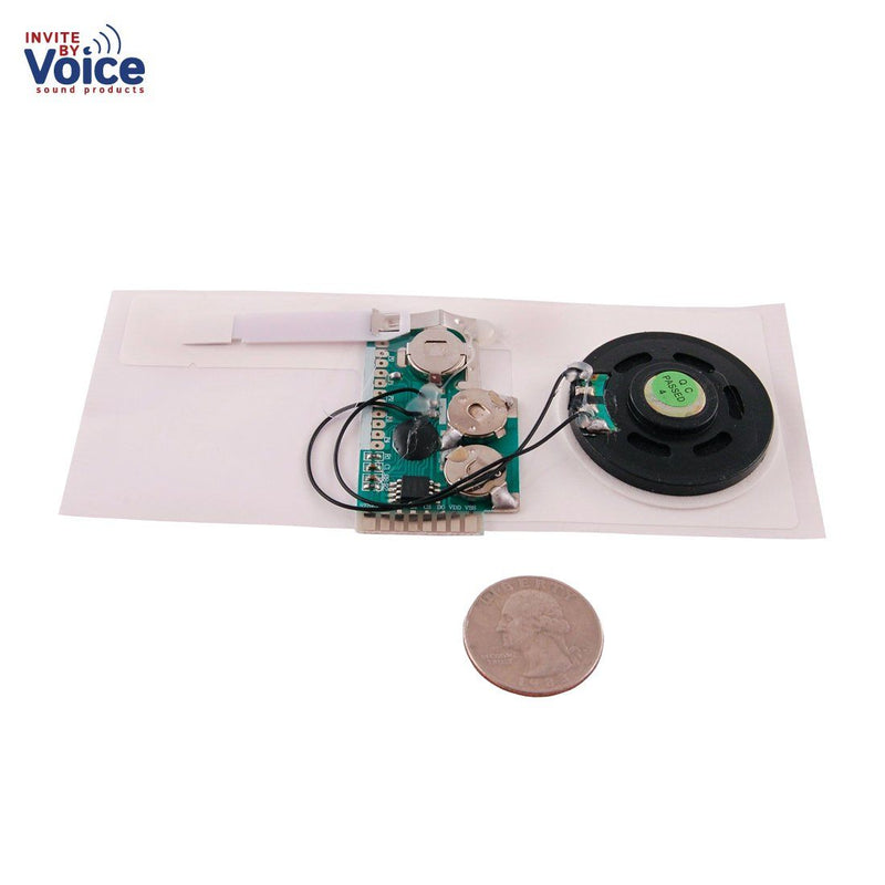 USB Sound / Voice Recording Slide Tongue Module for Greeting Card