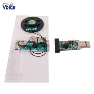 Set of 10 of USB Sound / Voice Recording Slide Tongue Module for Greeting Card