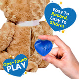 teddy bear voice recorder chip