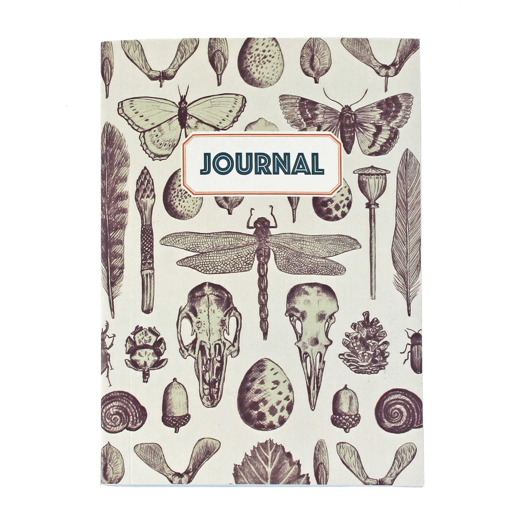 Natural History Journal N018 - Pack of 4 - Sukie Wholesale