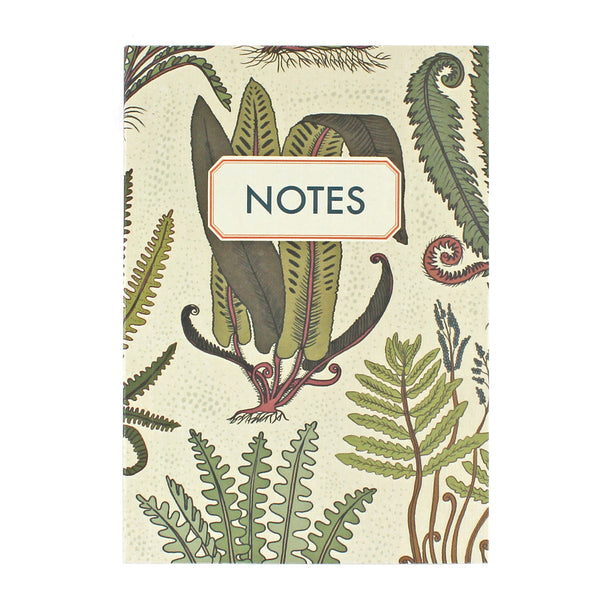 Fern Notebook - Pack of 4 - Sukie Wholesale