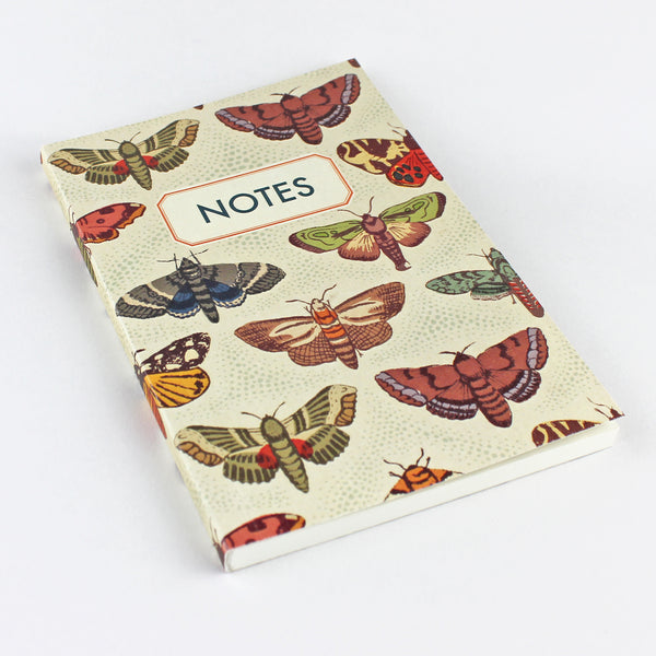Moth Notebook - Pack of 4 - Sukie Wholesale