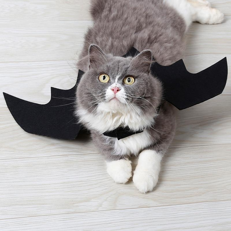 Bat Wings Cat Pet Costume