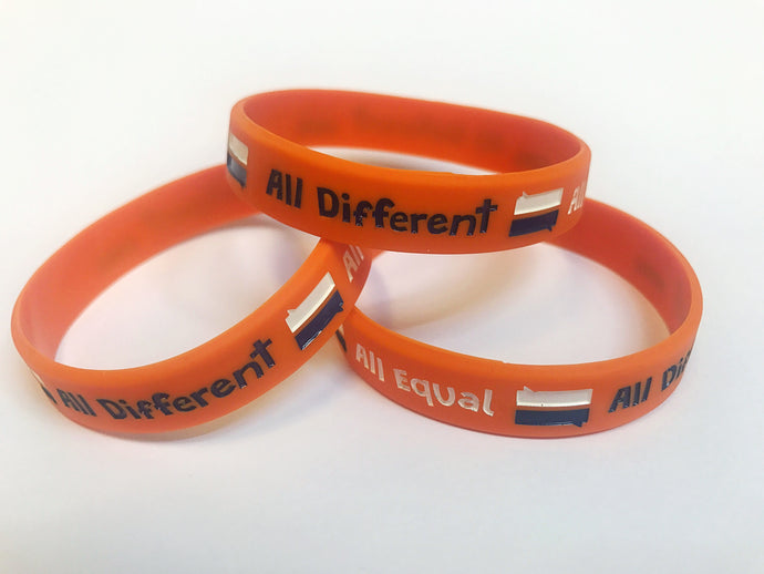 Anti-Bullying Week 2017 Wristbands