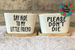 "3 inch square ""SNARKY"" Flower Pots"