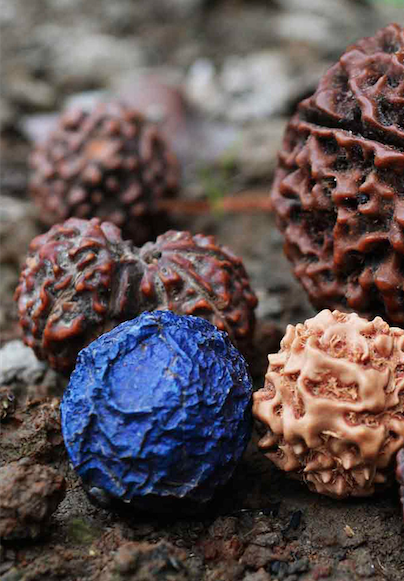 Understand more about Rudraksha : The different Mukhi and their meaning