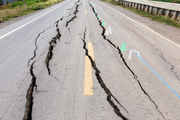 How to Survive an Earthquake: Everything You Need to Know