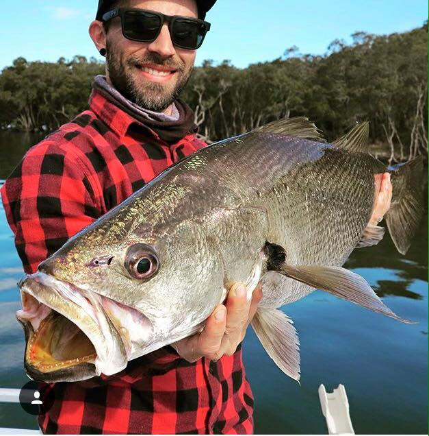 Do you know everything about Mulloway?