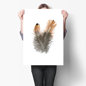 PARTRIDGE FEATHERS