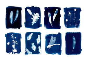 CYANOTYPE WORKSHOP TICKET