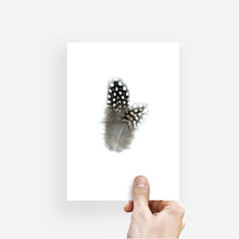 GUINEA HEN FEATHERS (BLACK AND WHITE)