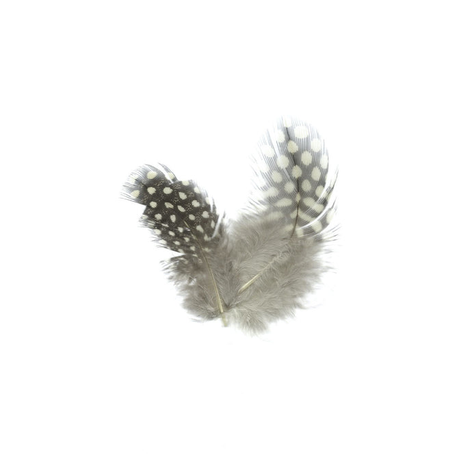 GUINEA HEN FEATHERS (GREY)
