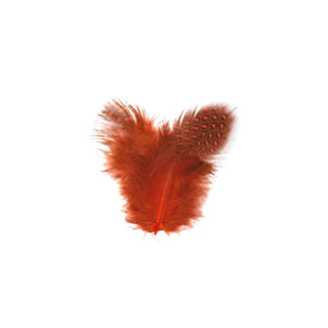 GUINEA HEN FEATHERS (ORANGE)