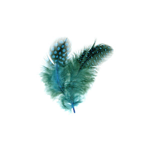 GUINEA HEN FEATHERS (TURQUOISE)