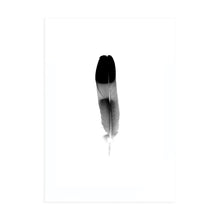 TRI COLOUR FEATHER