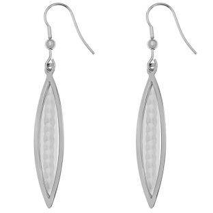Stainless Steel Drop Scale Earrings