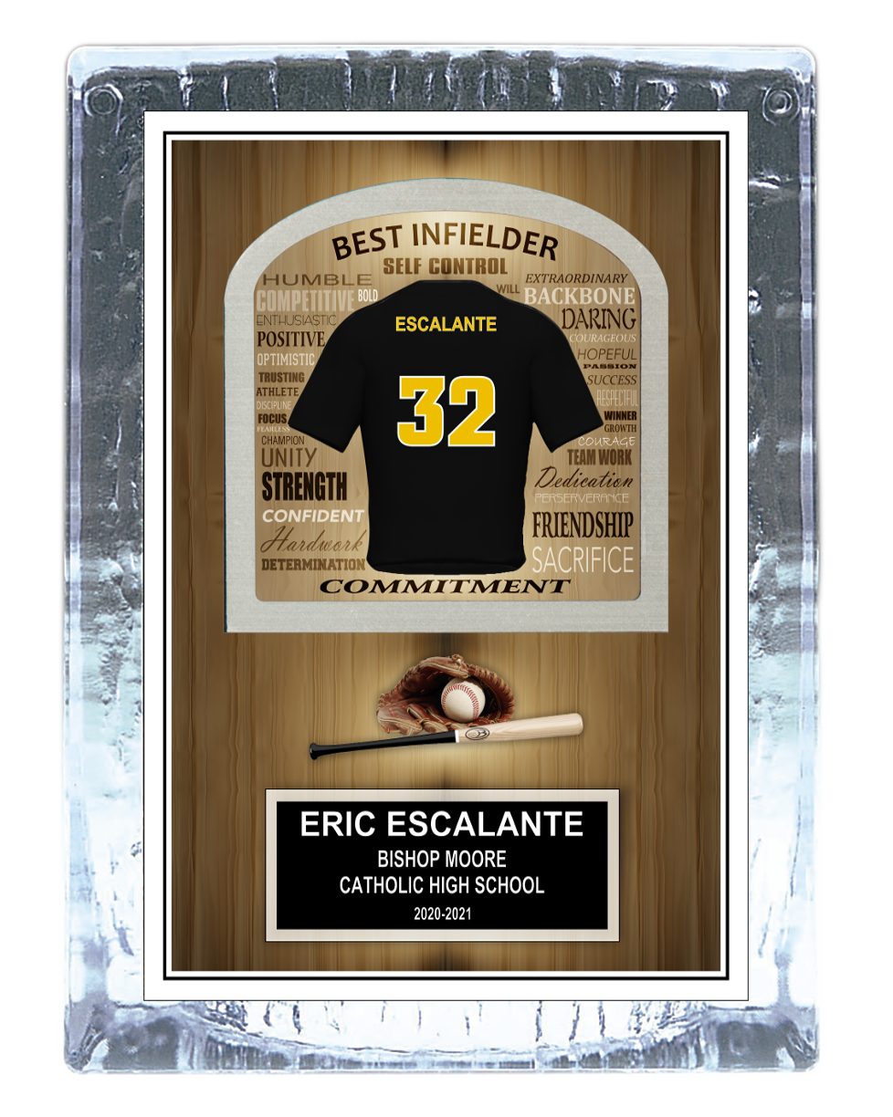 Baseball Inspirational Ice Award
