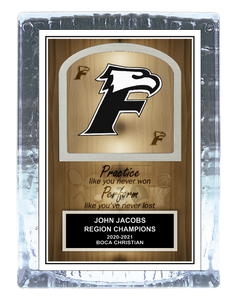 Team School Mascot/Logo Ice Award