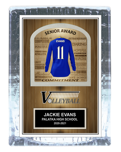 Volleyball Inspirational Ice Award