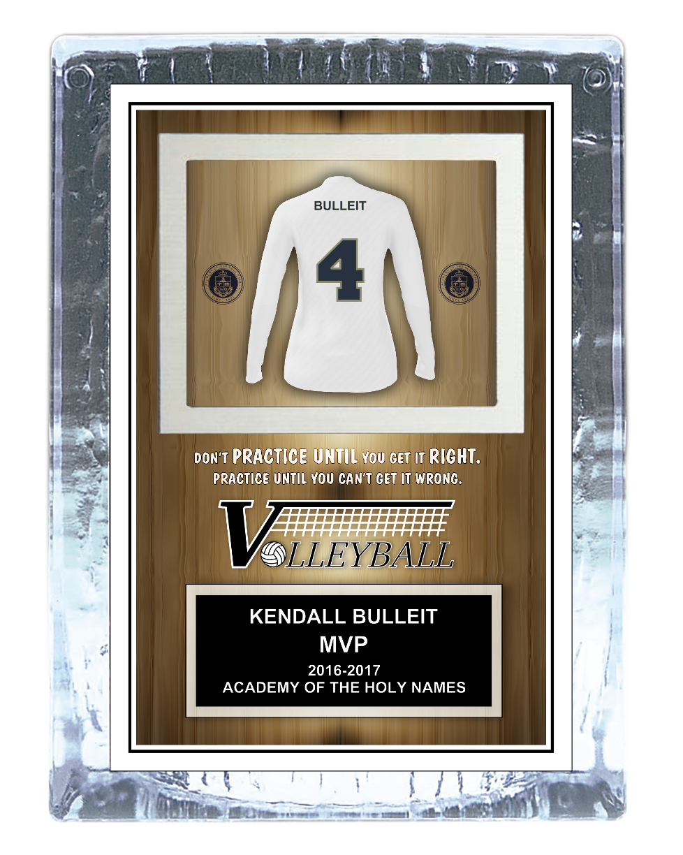 Volleyball Ice Award