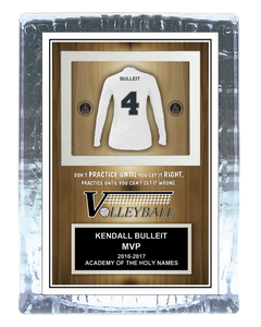 Team Volleyball Ice Award