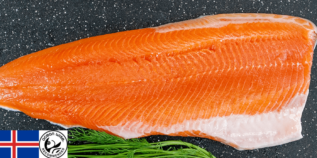 Fish Facts: Fresh Arctic Char Fillets