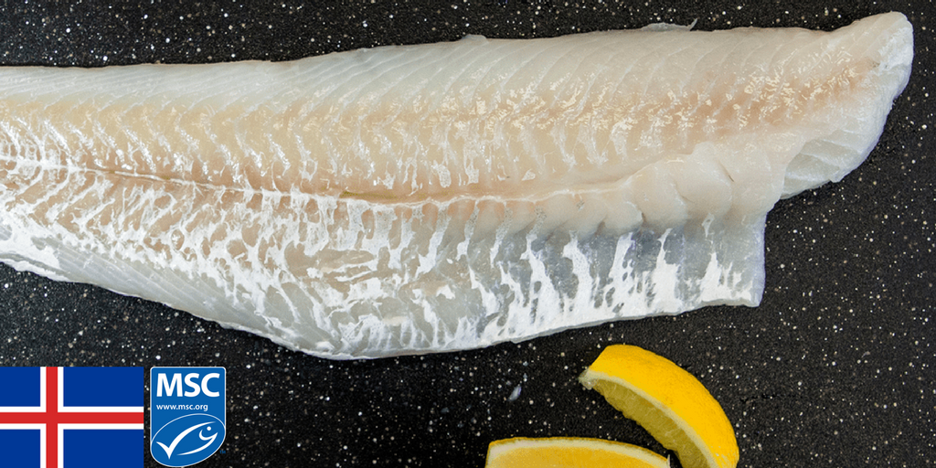Feature Fish: Fresh Icelandic Cod Fillets