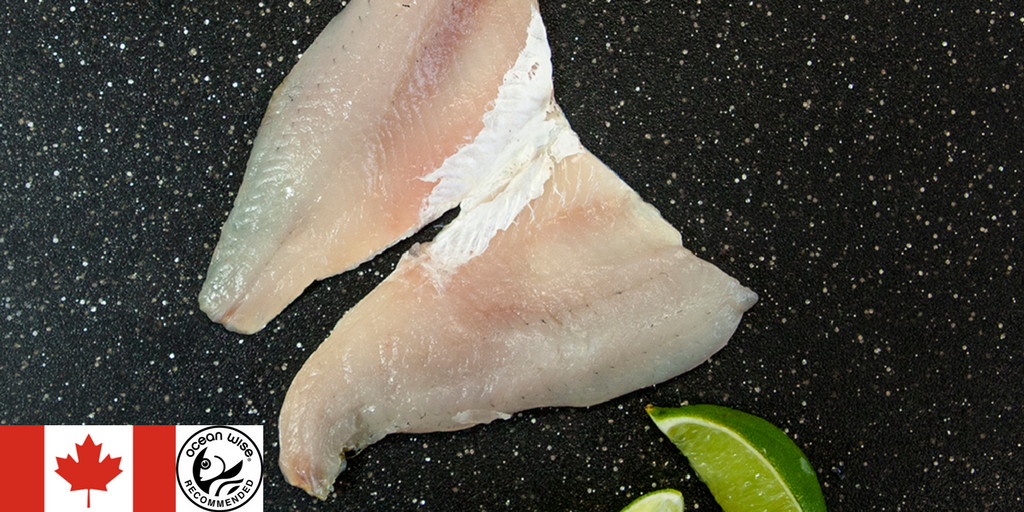Feature Fish: Fresh Yellow Lake Perch Fillets