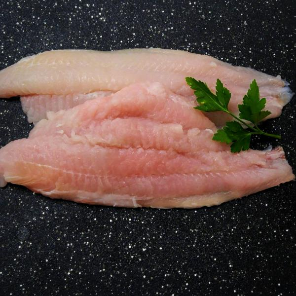 Fresh Catfish Fillets