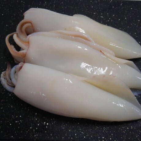 Whole Cleaned Squid