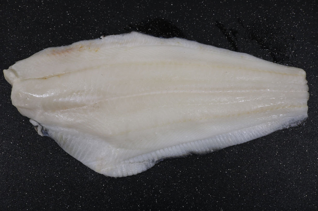 Baffin Island Turbot Fillets