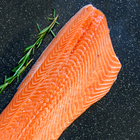 Fresh Wild Caught Pacific Coho Salmon Fillets