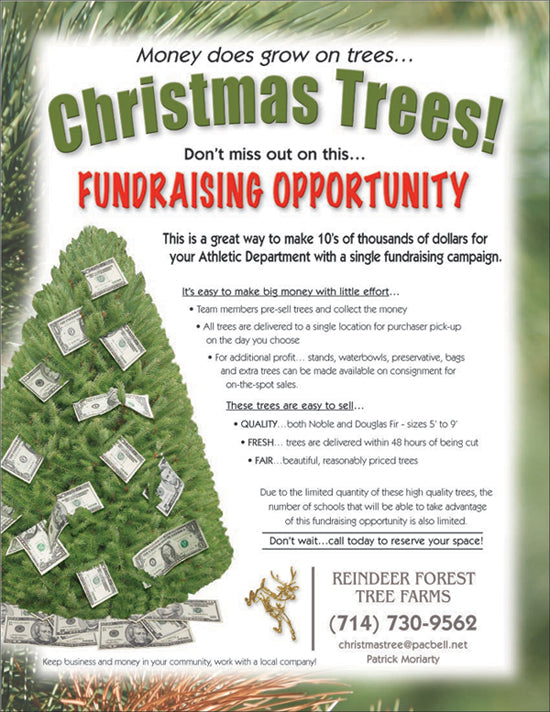 Christmas Trees Fundraising PDF