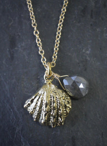 Sea and Stone Jewelry -  A dainty gold vermeil jewel box shell pendant, embellished with a corundum-sapphire briolette,  hangs from a gold chain necklace with a lobster clasp.