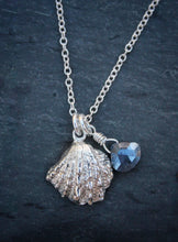 Sea and Stone Jewelry -  A dainty sterling silver jewel box shell pendant, embellished with a corundum-sapphire briolette,  hangs from a silver necklace with a lobster clasp.